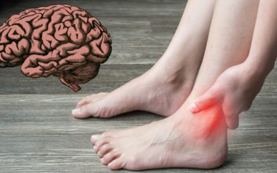 Can You Heal the Brain Like You Can A Weak Ankle?